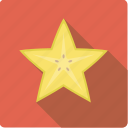 carambole, exotic, food, fruit, slice, star fruit icon