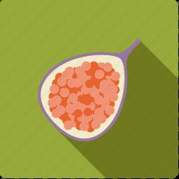 fig, food, fruit, half icon