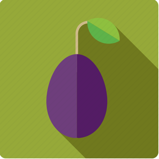 food, fruit, leaf, plum icon