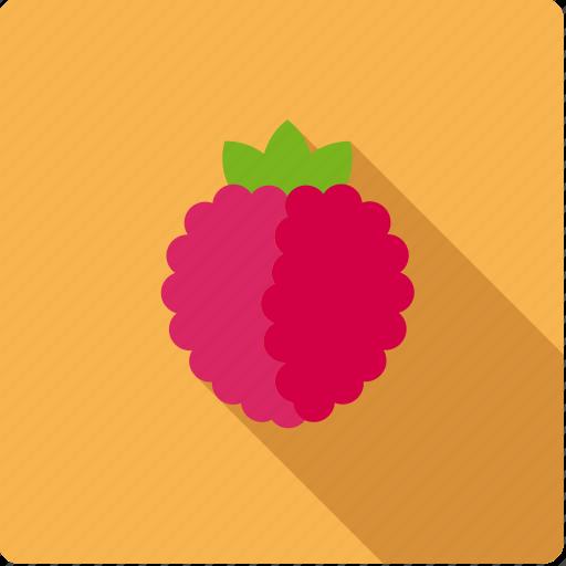berry, food, fruit, raspberry icon