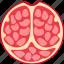 food, fresh, fruit, meal, pomegranate, restaurant, sweet icon