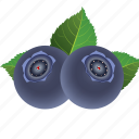 blueberry, dessert, diet, eco, food, fresh, fruit, healthy, nutrition, sweet, vegetarian icon