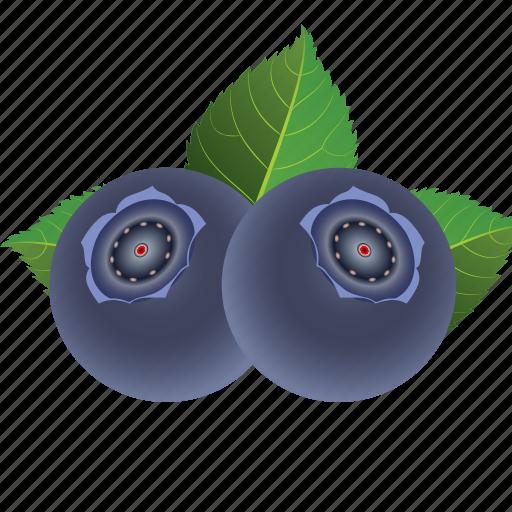blueberry, dessert, diet, eco, food, fresh, fruit, healthy, nutrition, sweet, vegetarian icon
