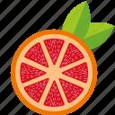 dessert, diet, eco, food, fresh, fruit, grapefruit, healthy, juice, nutrition, orange, sweet, vegetarian icon