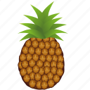 ananas, dessert, diet, eco, food, fresh, fruit, healthy, nutrition, sweet, tropical, vegetarian icon
