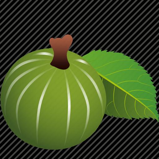 Dessert, diet, eco, food, fresh, fruit, gooseberries icon - Download on Iconfinder