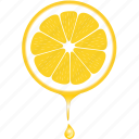 dessert, diet, eco, food, fresh, fruit, healthy, lemon, nutrition, sweet, vegetarian icon