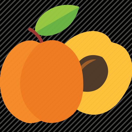 apricot, dessert, diet, eco, food, fresh, fruit, healthy, nutrition, sweet, vegetarian icon