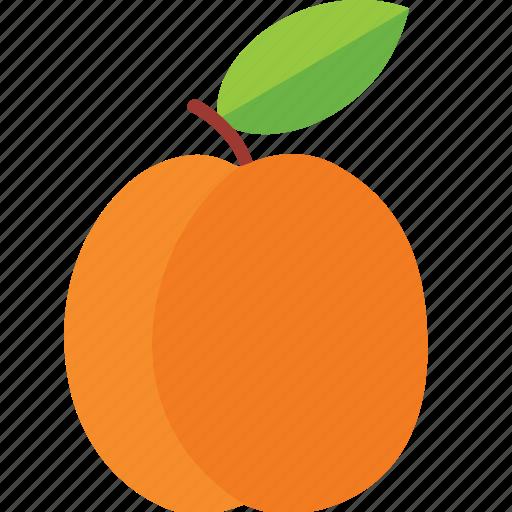 apricot, dessert, diet, eco, food, fresh, fruit, green, healthy, nutrition, sweet, vegetarian icon