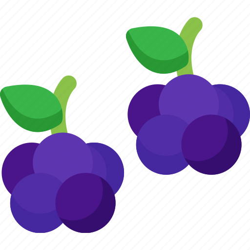 Blackberries, dessert, food, fruit, fruits, healthy, organic icon - Download on Iconfinder