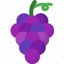 dessert, food, fruit, fruits, grape, healthy, organic icon