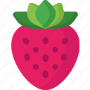 dessert, food, fruit, fruits, healthy, organic, strawberry icon