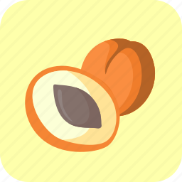apricots, food, fruit, half, piece icon
