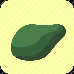 avocado, food, fruit, tropical icon