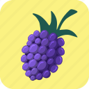 berry, blackberry, food, fruit icon