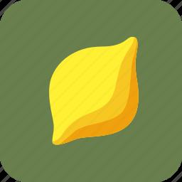 food, fruit, lemon, tropical icon