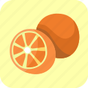 food, fruit, half, oranges, piece, tropical icon
