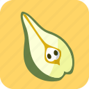 food, fruit, half, pear, piece icon