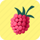 berry, food, fruit, raspberry icon