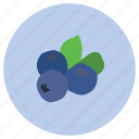 arandano, blue, blueberry, fruit, purple icon