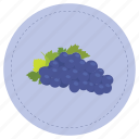 fruit, grape, purple, uva icon