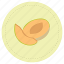 fruit, melon, orange icon