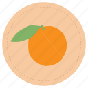 fruit, naranja, orange icon