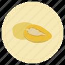 fruit, pepino dulce, pepinodulce, sweet, sweet cucumber, sweetcucumber, yellow icon