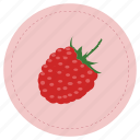 frambuesa, fruit, raspberry, red icon
