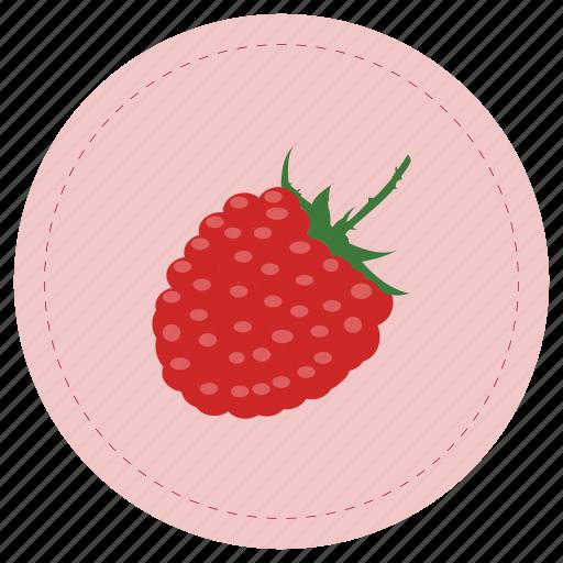 frambuesa, fruit, raspberry, red icon