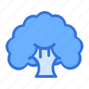 broccoli, cauliflower, fibre, food, healthy, vegetable icon