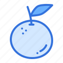 fruit, healthy, orange icon