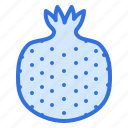 fruit, pome, pomegranate, seeds icon