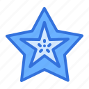 fruit, starfruit icon