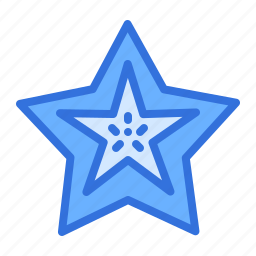 fruit, starfruit icon