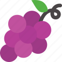 fruit, grape, purple icon