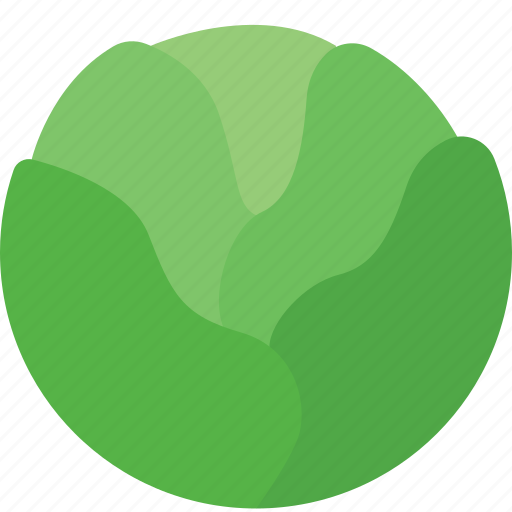 agriculture, cabbages, green, plant, vegetables icon