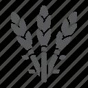 asparagus, diet, food, healthy, organic, vegetable icon