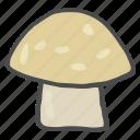 mushroom, food, healthy, vegetable, tropical, vitamin d