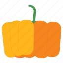 eat, food, fruit, halloween, healthy, pumpkin, vegetable icon