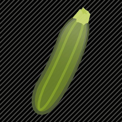 food, fresh, gourd, healthy, squash, vegetable, zucchini icon