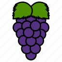 food, fruit, fruits, grape, grapes, sweet, tropical icon