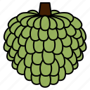 diet, food, fruit, healthy, healthy food, sugar apple, sweet icon