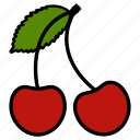 cherry, diet, food, fruit, fruits, healthy food, vegetarian icon