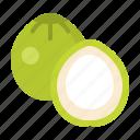 coconut, food, fresh, fruit, healthy, vitamin icon