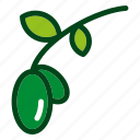 food, fruits, natural, olive, vegetables icon