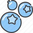 berries, berry, blueberry, bog, healthy, vegetarian, whortleberry icon