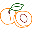 apricot, apricot juice, food, fruits, fruits icon, healthy food icon