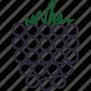 blackberry, blackberry juice, food, fruits, fruits icon, healthy food