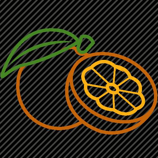food, fruits, fruits icon, healthy food, orange, orange juice icon